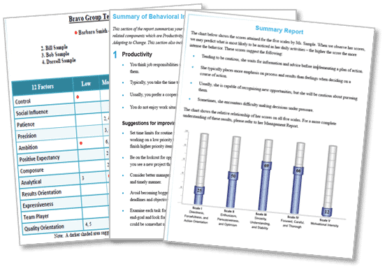 Team Building Assessment Reports